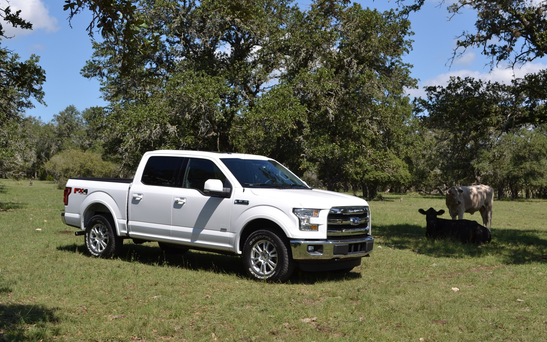 du ford f 150 2015 l epa d voile ses chiffres guide 2015 ford f 150. Cars Review. Best American Auto & Cars Review