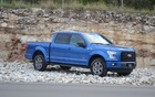 Ford sold more than 120,000 units of its F-Series in Canada last year.
